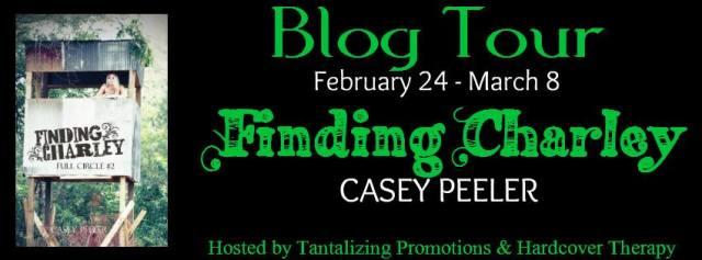 FB Blog Tour Banner