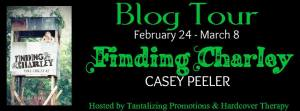 FB Blog Tour Banner